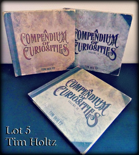 lot 5 anniversaire joli souvenir tim holtz compendium of curiosities livre scrapbooking mixed media
